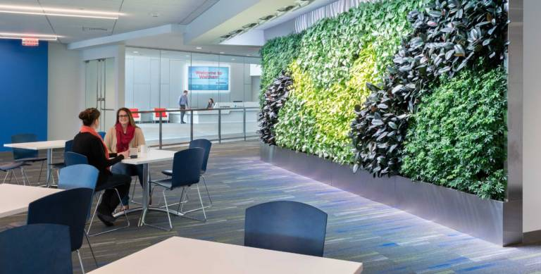 Corporate Furniture in Inside Garden