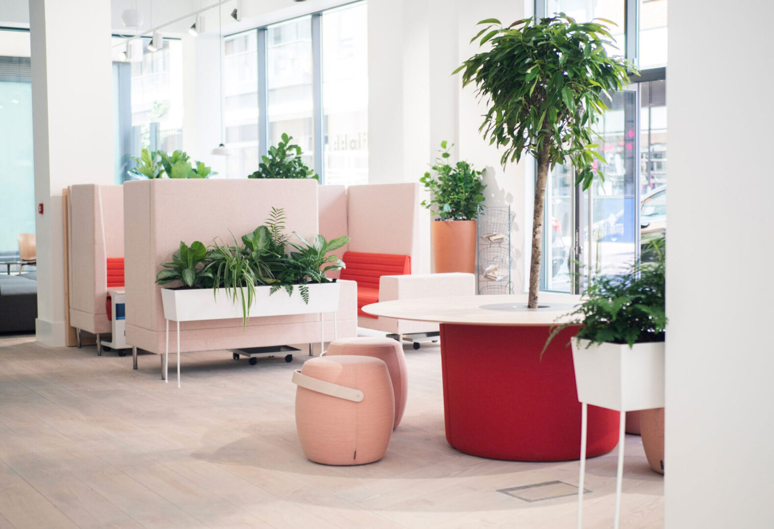Pink Lobby Area With Indoor Plants